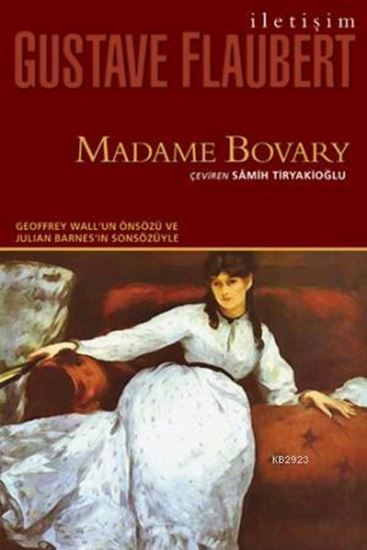 an analysis of objects in madame bovary by gustave flaubert